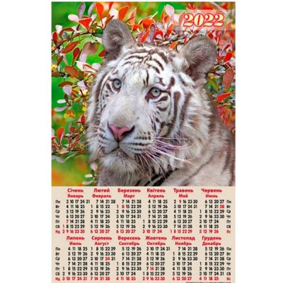 Календарь  настенный 2022 А2 А-09 Тигр белый
