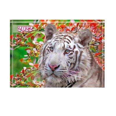 Календарь настенный 3 месяца 2022 БЭК-08 Белый тигр (1 спираль)