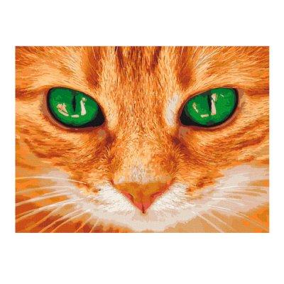 Набор картина по номер. 40х50 Зеленые глаза 11620-АС **