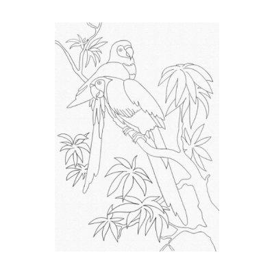 Набор картина по контуру 25 х 30 Попугаи 15507-АС **