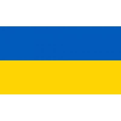 Флаг Украины (120х180) пластикиковое древко + присоска для авто