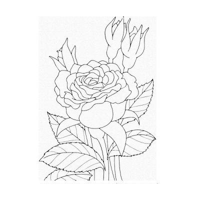 Набор картина по контуру 25 х 30 Роза 15505-АС **