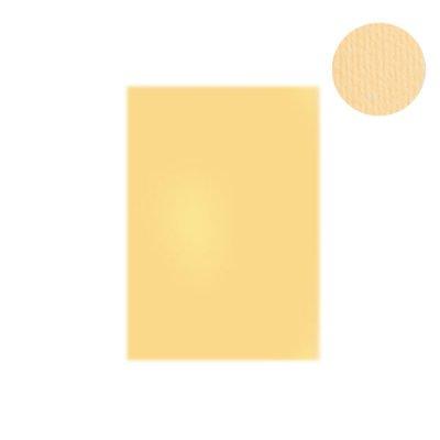 """Бумага для дизайна """"Elle Erre"""" А4 220 г/м2 01 panna бежевая"""